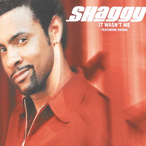 Shaggy It Wasn T Me Vocal 12 Mix Listen On Deezer