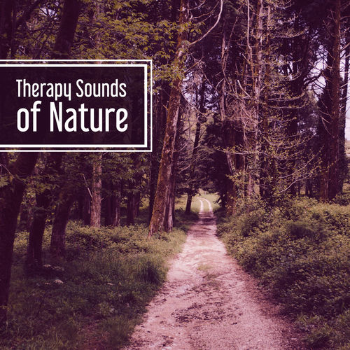 Nature and Rain: Therapy Sounds of Nature – Deep Meditation, Music