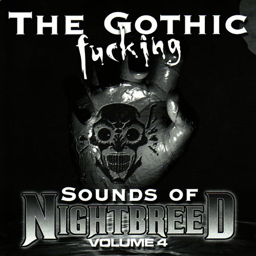 the sound of fucking