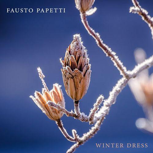 Cd  Fausto Papetti - Winter Dress  500x500-000000-80-0-0