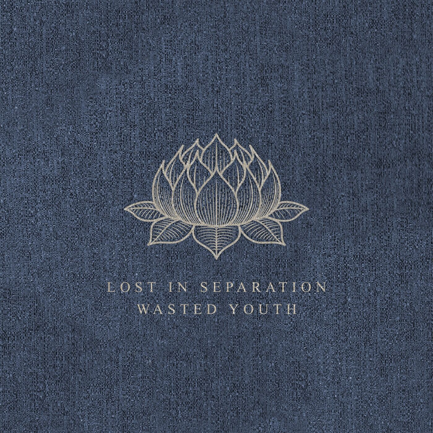 Lost in Separation - Wasted Youth [single] (2017)