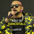 Best of Dancehall (Sean Paul, Shaggy, Kartel...)