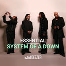 Essential System of a Down