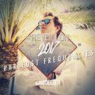 Réveillon 2017 par Lost Frequencies