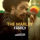The Marley Family (Damian, Stephen, Ziggy...)